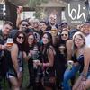 Festival loba 31