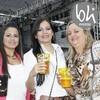 Vila mix 026